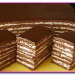 Шоколадно медовый торт с орешками